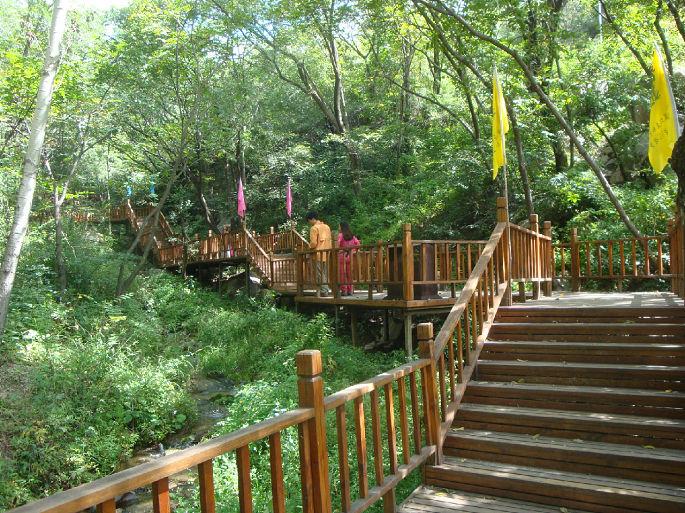 我国森林旅游产业稳步发展,前景喜人