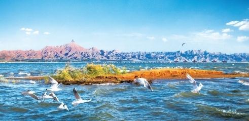 创行合一乌海旅游