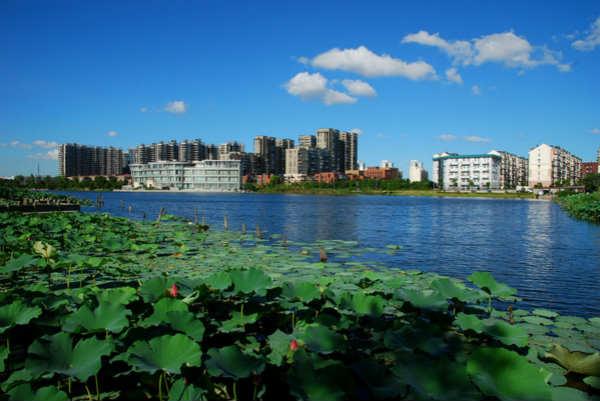 城市公园规划,日湖公园全面改造提升