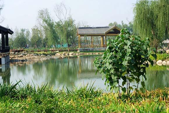 农业生态园规划